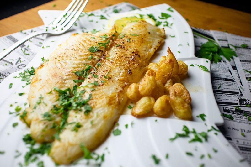 pescado halibut